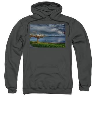 Swan And Tree Sweatshirt