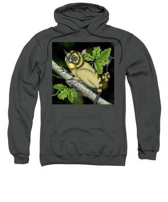 The Orbler Sweatshirt