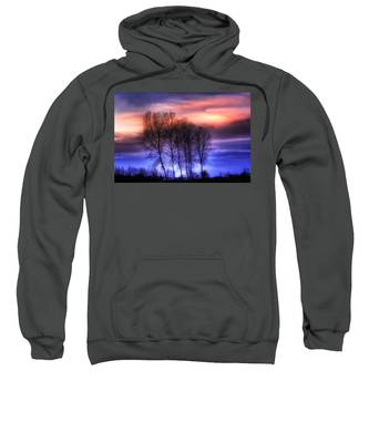 Trees And Twilight Sweatshirt