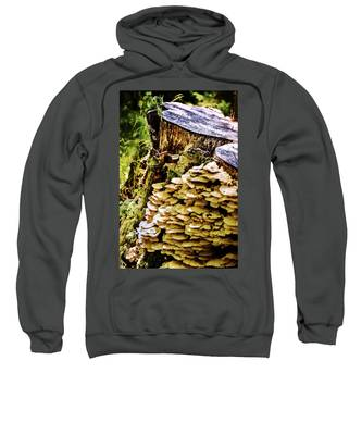 Trunk And Mushrooms Sweatshirt