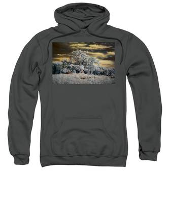 Witness To History Sweatshirt