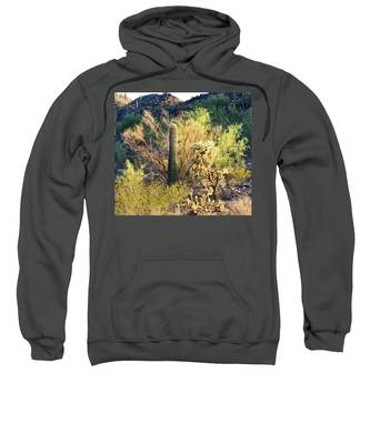 Sweatshirt featuring the photograph Cactus Kingdom by Judy Kennedy