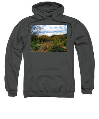Sweatshirt featuring the photograph Desert Wildflowers In The Valley by Judy Kennedy