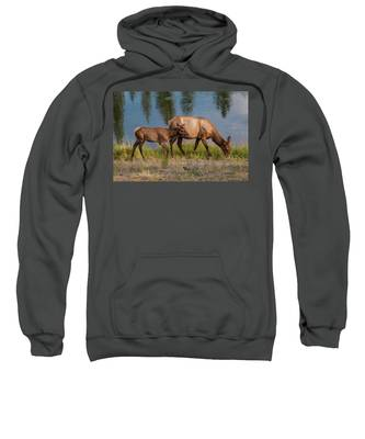 Elks Grazing On The Madison River, Wy Sweatshirt by Lon Dittrick