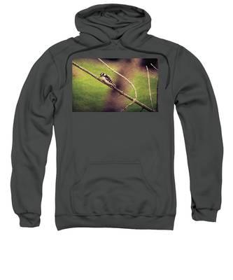 Faded Canvas Woodpecker Sweatshirt