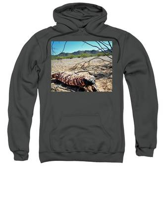 Sweatshirt featuring the photograph Gila Monster In The Arizona Sonoran Desert by Judy Kennedy