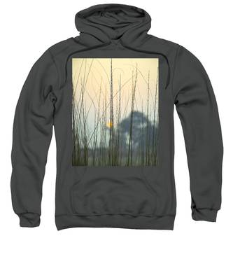 Morning Sun Hooded Sweatshirts T-Shirts