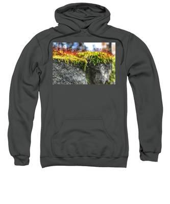 Nascent Sweatshirt