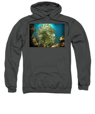 Ocean With Its Life Underground Sweatshirt