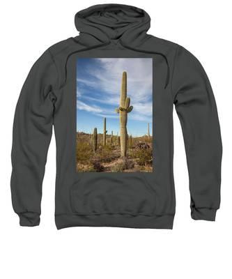 Saguaro Evening Sentry Sweatshirt by Lon Dittrick