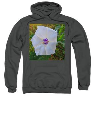 Sweatshirt featuring the photograph The Perfect Flower - Sacred Datura by Judy Kennedy