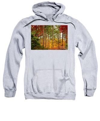 Autumn Canvas Sweatshirt