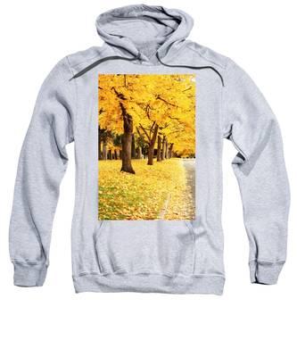 Autumn Perspective Sweatshirt
