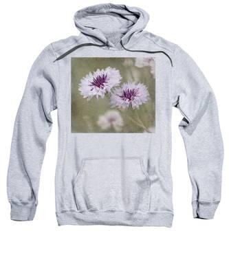 Bachelor Buttons - Flowers Sweatshirt