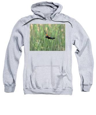 Red Winged Blackbird Hooded Sweatshirts T-Shirts