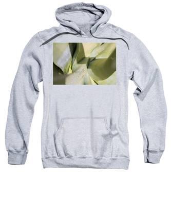 Giant Agave Abstract 3 Sweatshirt