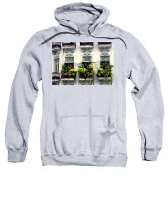 Havana Windows Sweatshirt