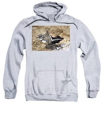 Killdeer Fakeout Sweatshirt