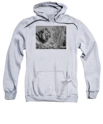 Watching Intently Sweatshirt