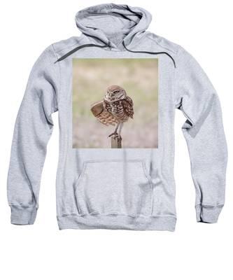 Little One Sweatshirt