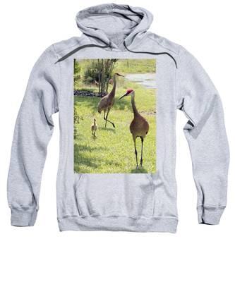 Looking For A Handout Sweatshirt