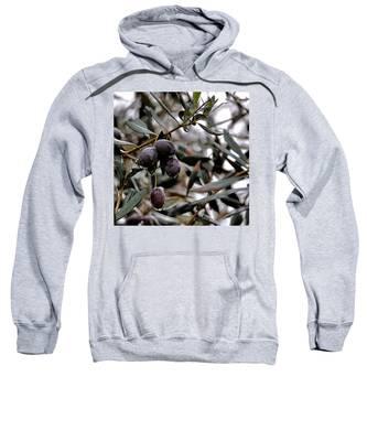 Nazareth Olives Israel Sweatshirt
