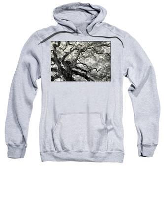 Reaching For Heaven Sweatshirt