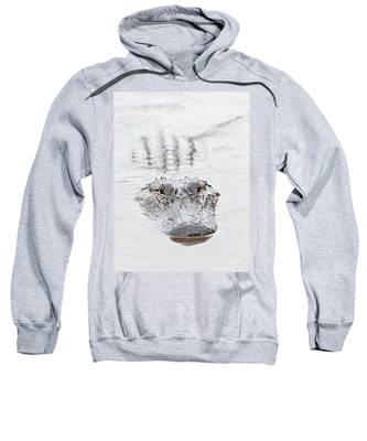 Sneaky Swamp Gator Sweatshirt