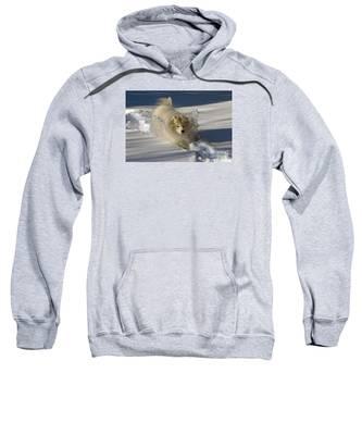 Snowplow Sweatshirt