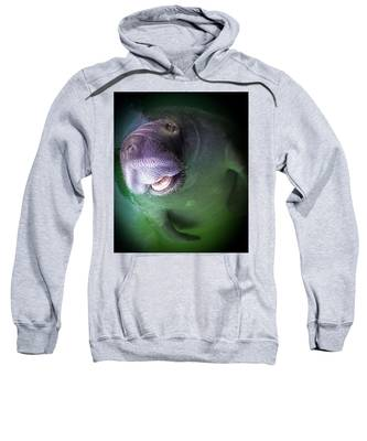 The Happy Manatee Sweatshirt