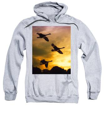 The Journey South Sweatshirt
