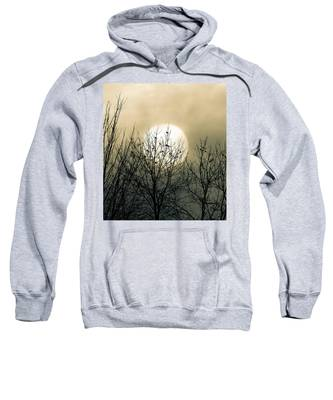 Winter Into Spring Sweatshirt