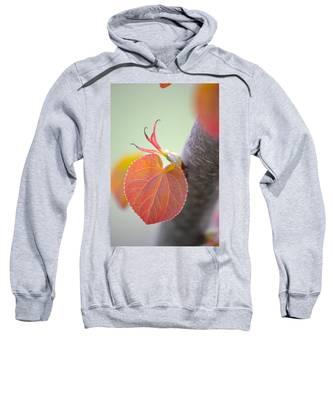 Budding Heart Sweatshirt