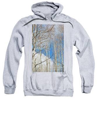 Cloudy Aspen Sky Sweatshirt