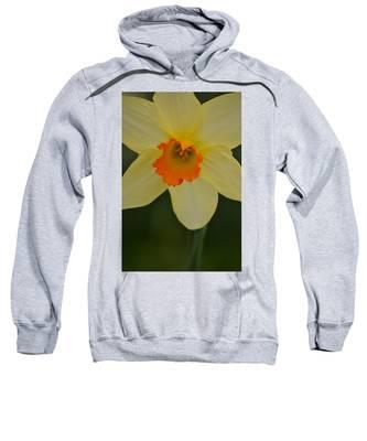 Daffodilicious Sweatshirt