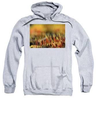 Flaming Moss Sweatshirt