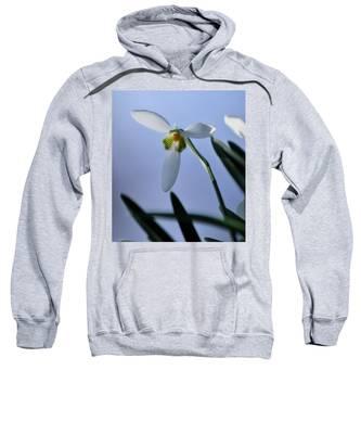 Giant Snowdrop Sweatshirt