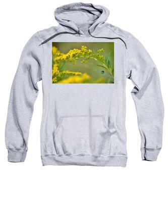Golden Perch Sweatshirt