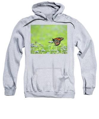 Monarch And Mist Sweatshirt