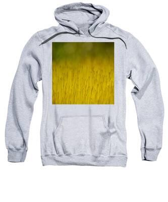 Moss In Yellow Sweatshirt