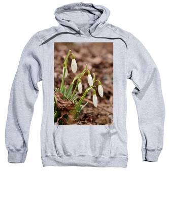 Snow Drops Sweatshirt