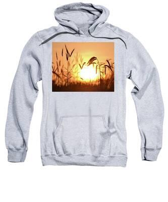 Sunset Rye IIi Sweatshirt