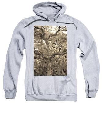 The Wicked Tree Sweatshirt
