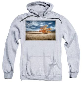 A Lone Tree Sweatshirt