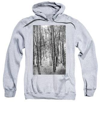 A Tree's View In Winter Sweatshirt