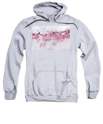 Beauty Of Blossom Sweatshirt