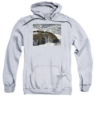 Below Salmon Creek Sweatshirt