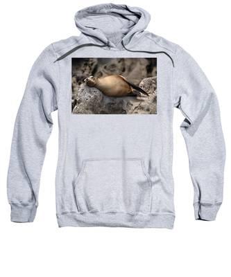 Break Time Sweatshirt