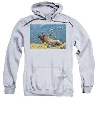 Bull Elk Bugling Sweatshirt