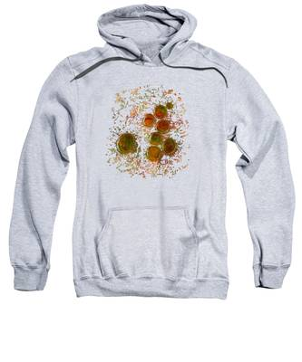 Colors Of Nature 10 Sweatshirt